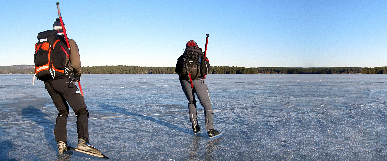 Accessoires de skate - suédois